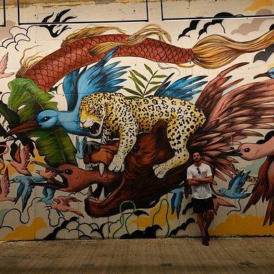 Mural of Brazilian Artist Mateus Bailon