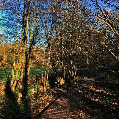 14.  Crane Valley Local Nature Reserve, Cranbrook, Kent