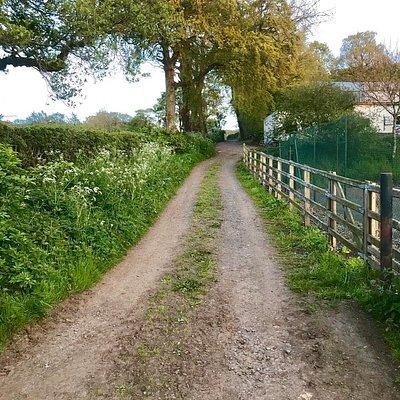 Co Antrim countryside