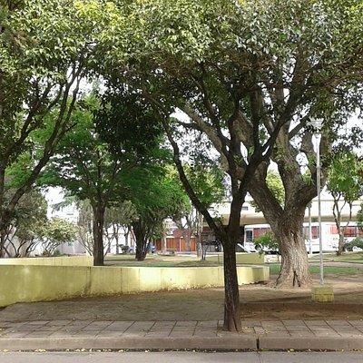 Plaza de la Terminal: Vista de la Plaza- Ciudad de San Pedro- Pcia. Bs.As. 2019.