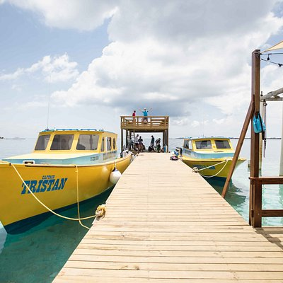 UDC - The Premier Dive Training Facility in the Caribbean