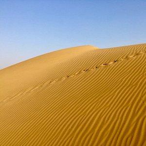 Non tourists desert