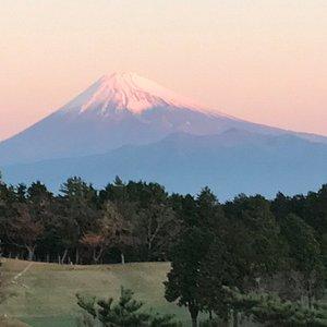 明け方はピンク色の富士山でした