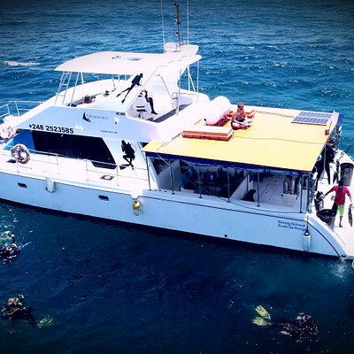Our catamaran the Twinspirirt