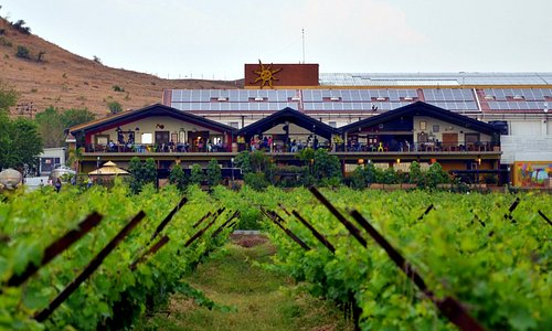 A view from the Vineyards!