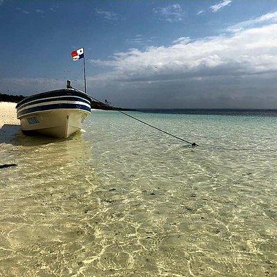 Isla iguana