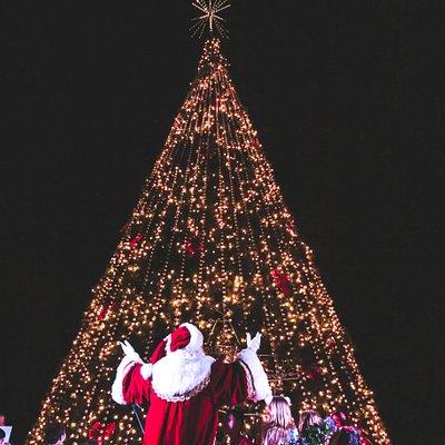 Tree lighting ceremony on November 30, 2019