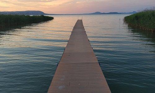 Lake Balaton pure nature.