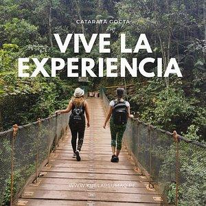 Viviendo la experiencia de visitar la Catarata Gocta en la región Amazonas.