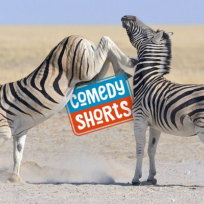 ComedyShorts is a fun, fast-paced comedy improvisation show in English.