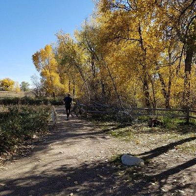 South Boulder Creek Trail from Bobolink Trailhead