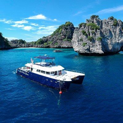 New diving catamaran