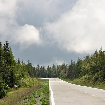 View of Route 150, Highland Scenic Highway, Monongahela National Forest, West Virginia, May 19, 2018.(Forest Service photo by Kelly Bridges)