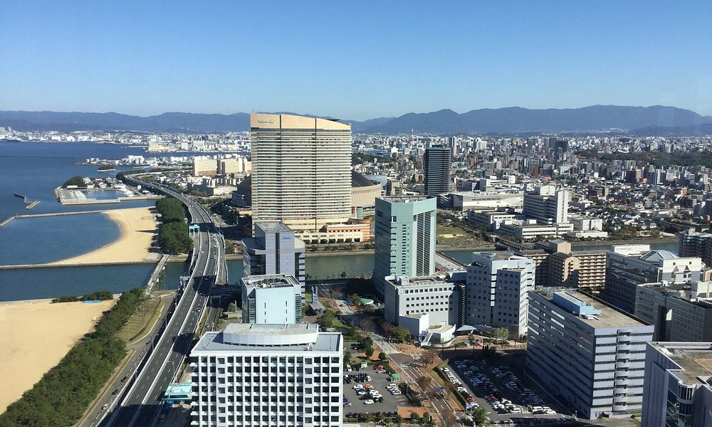 This is a view you will see from the top of the Fukuoka Tower.