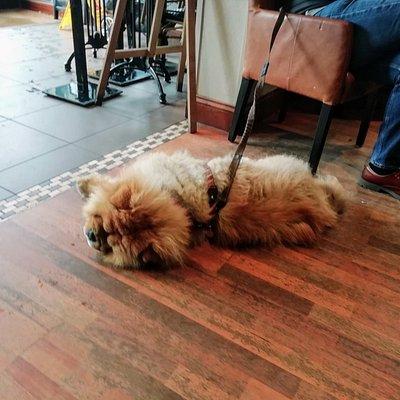Twelve Cafe Bar, Baildon