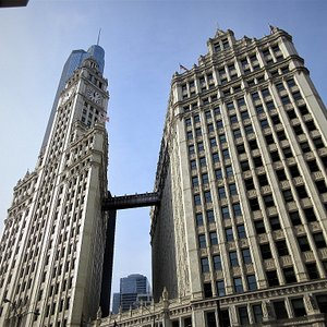 Wrigley Building: View from Pioneer Court