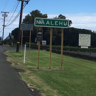 Approaching the heritage town of Naalehu and Mark Twain Monkey pod tree.