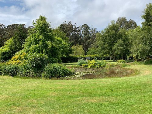 The most beautiful gardens in park like surrounds with rare trees from all over the world.  We spent 1 hour here admiring the artistic sculptures.  Will be back again with a picnic rug and food!  Very friendly owners who will give you a tour of the gardens for a small fee