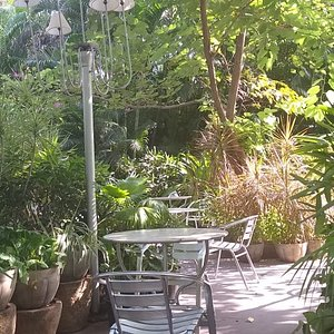 The seating in the garden is very peaceful and quite, surrounded by tall leafy plants and greenery. Very pleasant since the weather was good.