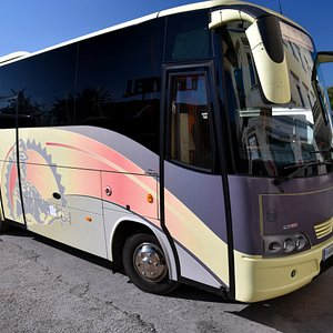 Our chariot on the day trip to Pompeii