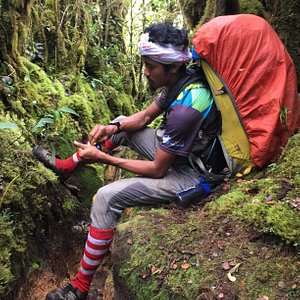 Experience our rainforest multipeak hiking expedition. Spend your 3 days 2 nights in the jungle with our experience mountain guide.