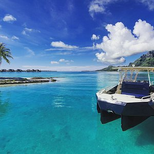 Best boat to go diving