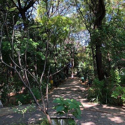 Arboretum Nacional