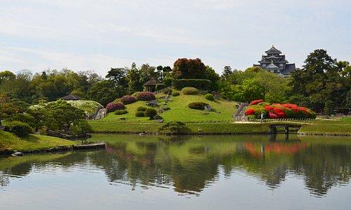 岡山後楽園 つつじと沢の池