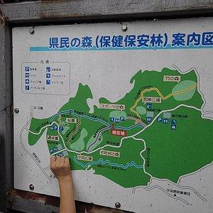 県民の森 案内図