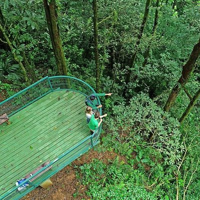 The forest viewing platform at Tapir Valley Nature Reserve.