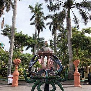 Nov 2019 - Plaza de Armas de Tampico