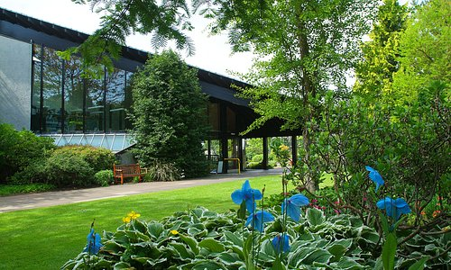 The welcome center at the Botanic Garden is an award winning entrance and orientation space that frames a visit to botanical wonders such as the Himalayan blue poppy (Meconopsis grandis).