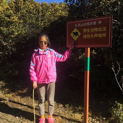 The sign shows there are wild animals around Wufeng Mountains too.
