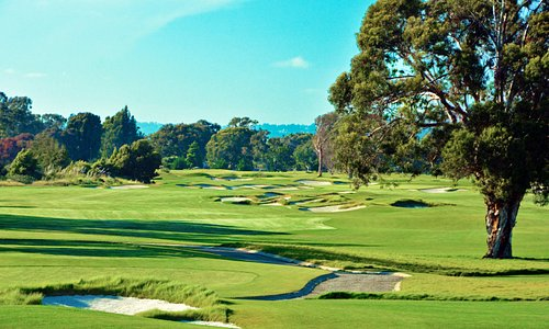 New South Course... Bay Areas Only Austrialian Sand Belt Style Golf Course