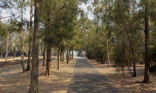 Path next to Zoo