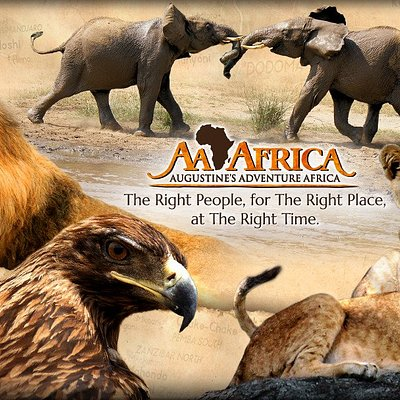 Cover Photo - Augustine's Adventure Africa (AA Africa)