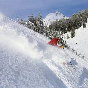 Skiing the powder at Mt. Hood Meadows