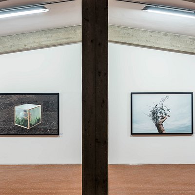Kyle Thompson, Open Stage. Greenhouse (left); Harness (right)