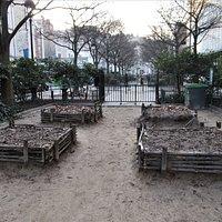 Le square - Jardin pédagogique
