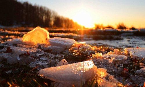 Il calore di un raggio di sole scioglie qualsiasi tipo di ghiaccio.🧡 The heat of a sunbeam melts any type of ice.🧡