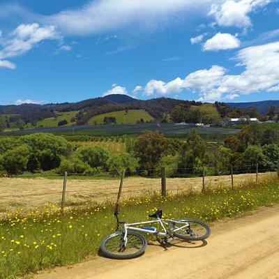 Guided Tours by HUON BIKES.