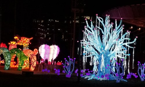 "Full display of ""winter tree"" along with other displays .... one walks along and sees display after display .... beautiful!"