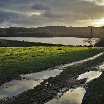 4.  Darwell Reservoir, Robertsbridge, East Sussex
