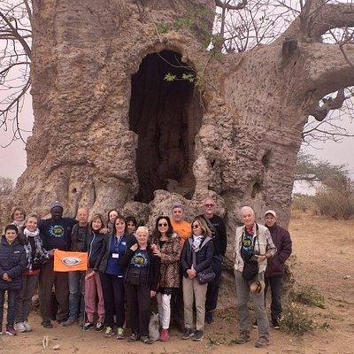Pepita viaggi ln.senegal.direttamente con.un corrispondente.locale www.cicotour.com www.dakar-travels.com @Bibibbbb
