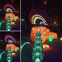 Atlanta Chinese Lantern Festival 2020