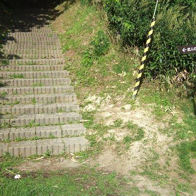この階段の先にあります