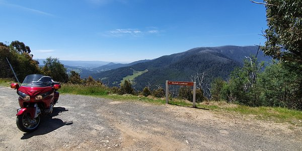 Nicoll Lookout