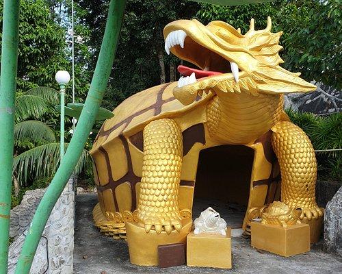 Tortue dragon