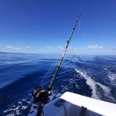 Океанская рыбалка троллинг из Сосуа и Пуэрто-Плата