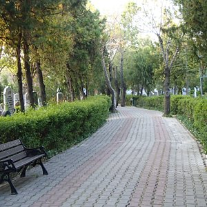 Bench and path in Ucler Cemeterie